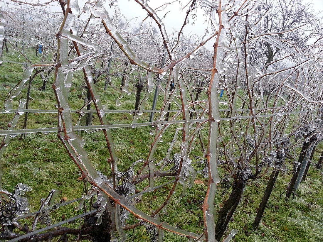Eisregen 4