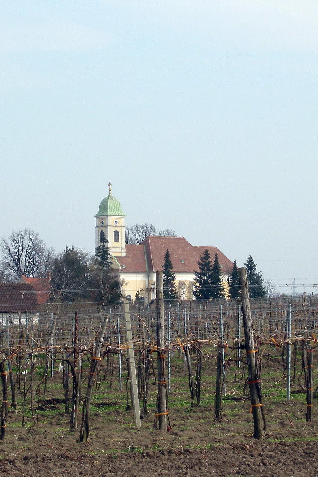Pfarrkirche Watzelsdorf vom Keller aus